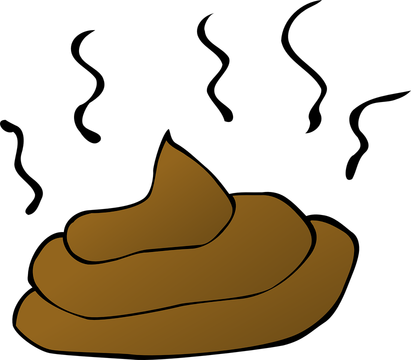 Poop, Feces, Smelly, Crap, Dog, Stool, Shit, Droppings - Free PNG Smelly