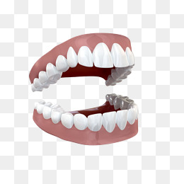 Open teeth, Tooth, White, Hand Painted PNG Image - Free PNG Teeth