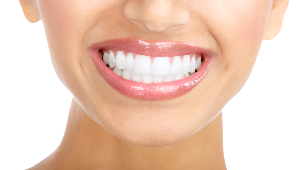 White Teeth PNG Clipart - Free PNG Teeth