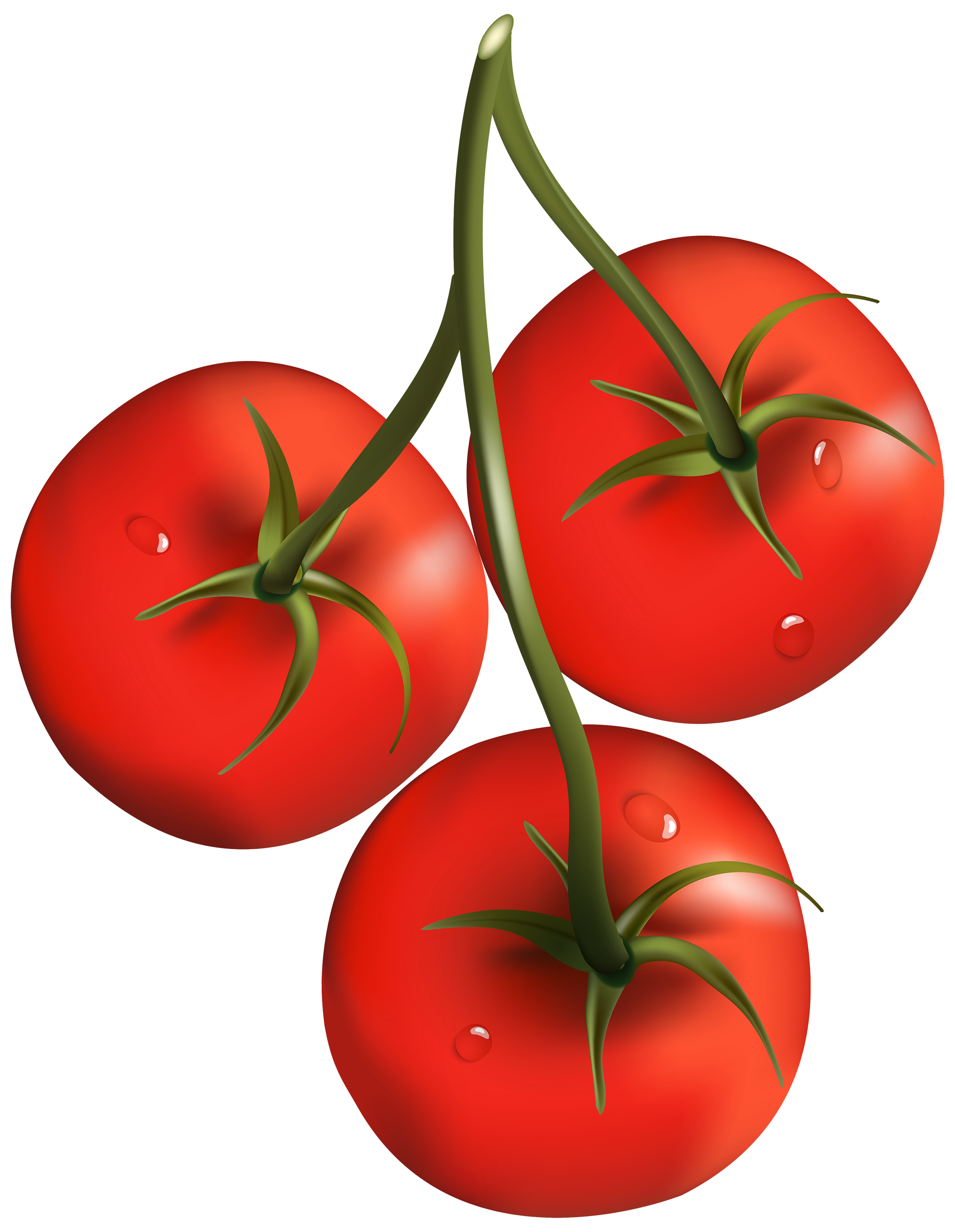 Free PNG Tomatoes - 57203