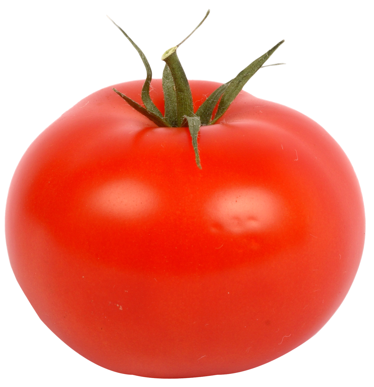 Tomato PNG Transparent Tomato.PNG Images. | PlusPNG