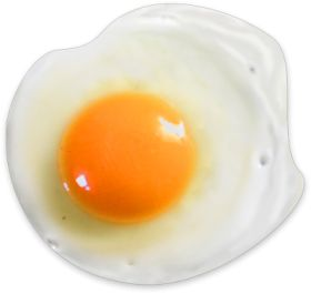 Fried Egg PNG HD-PlusPNG.com-280 - Fried Egg PNG HD