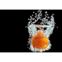 Fruit Water Splash Free Png Image PNG Image