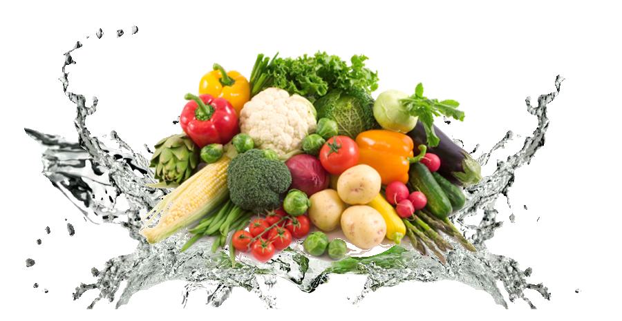 Vegetable Transparent Background - Fruits And Vegetables PNG HD