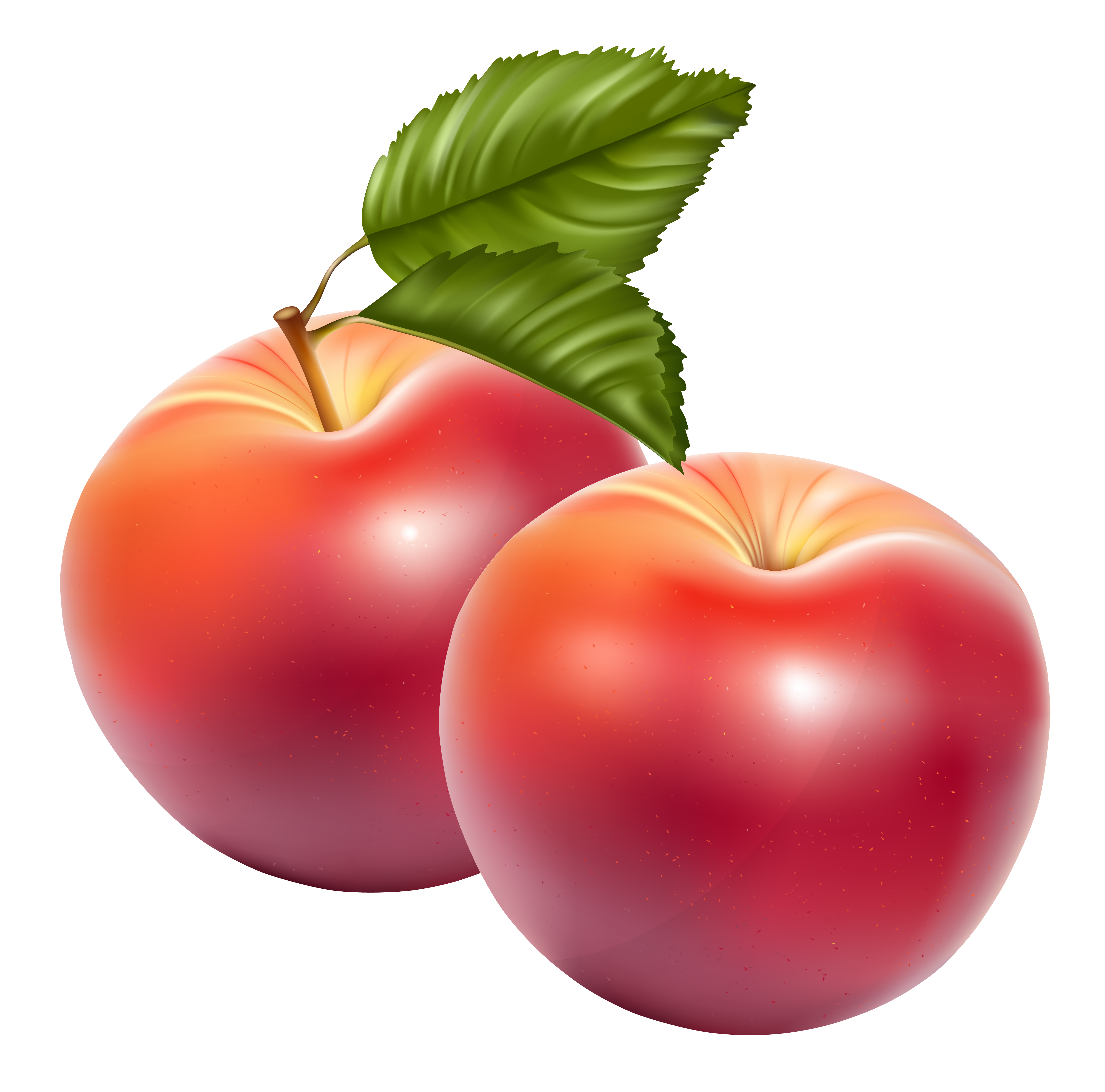 Apple Fruit PNG Image - Fruits PNG HD