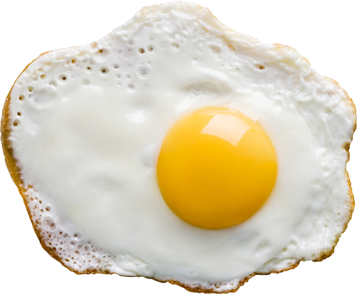 Fry Egg PNG - 66767