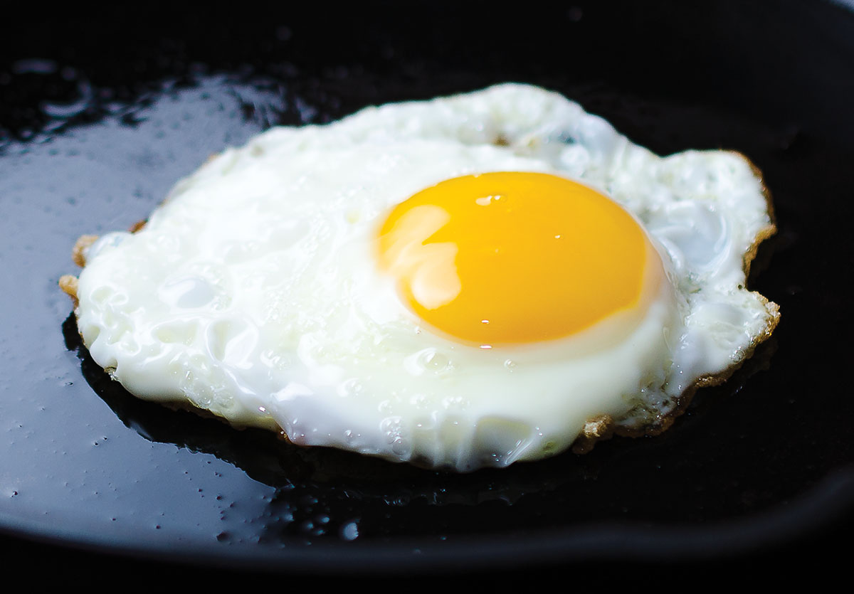 Fry Egg PNG - 66771