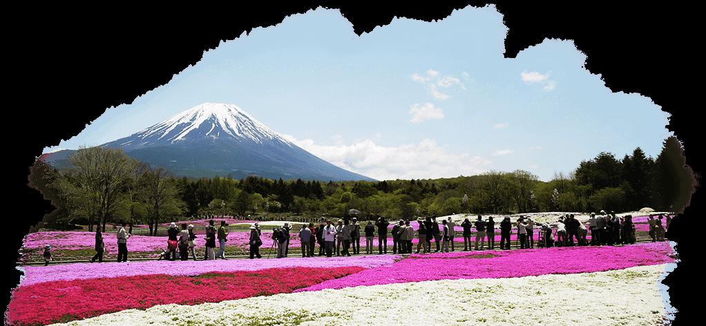 Fuji Mountain PNG - 157022