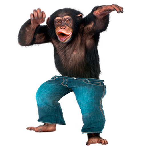 Funny Monkey PNG HD-PlusPNG.com-512 - Funny Monkey PNG HD