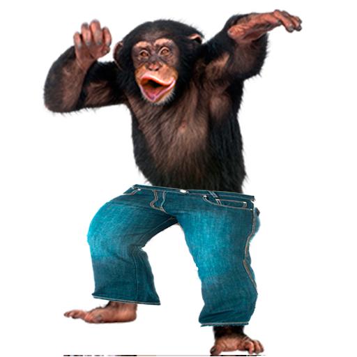 Funny Monkey PNG HD-PlusPNG.com-512 - Funny Monkey PNG HD