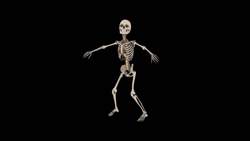 Funny Skeletons Hip Hop Street Dancing - Skate Roll. Transparent Video With  Alpha Channel. PNG   MOV Stock Footage Video 10316087 | Shutterstock - Funny PNG HD