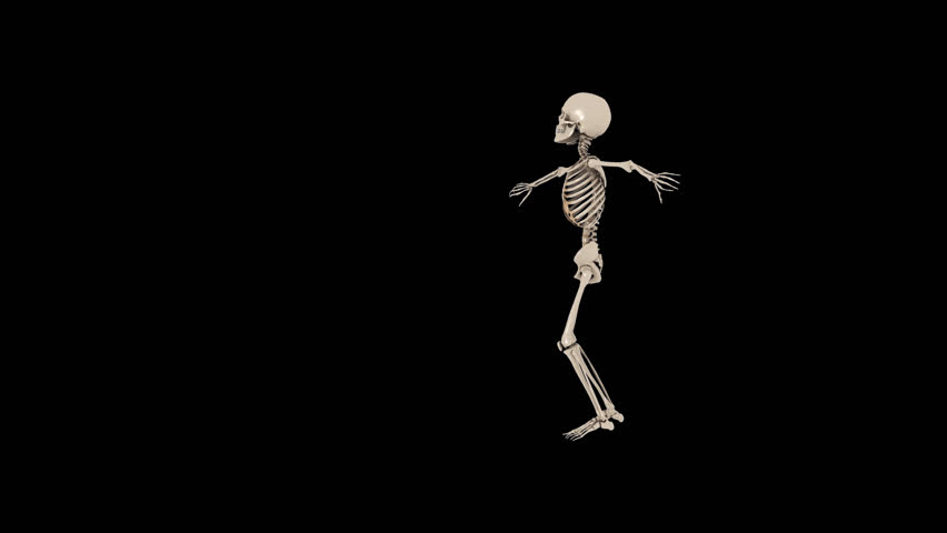 Funny Skeletons Hip Hop Street dancing - Thriller Transparent video with  alpha channel. PNG   - Funny PNG HD