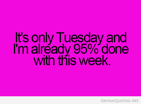 Funny tuesday tumblr saying - Funny Tuesday PNG