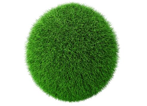 Grass Ball - Fuzzy Ball PNG
