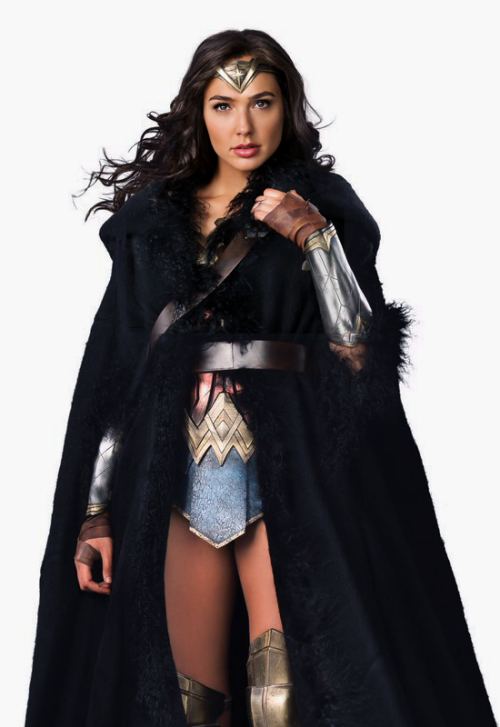Gal Gadot - Wonder Woman (2017) - Gal Gadot PNG