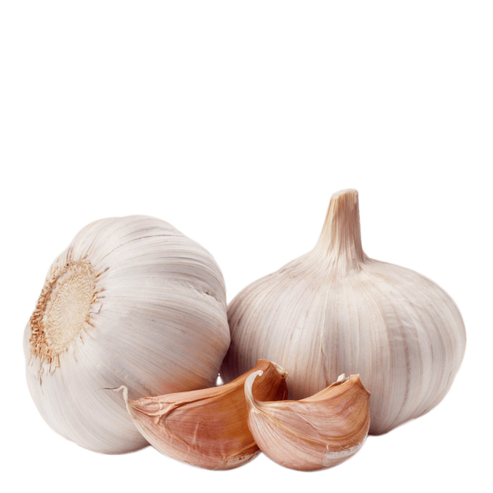 Garlic HD PNG-PlusPNG.com-1000 - Garlic HD PNG