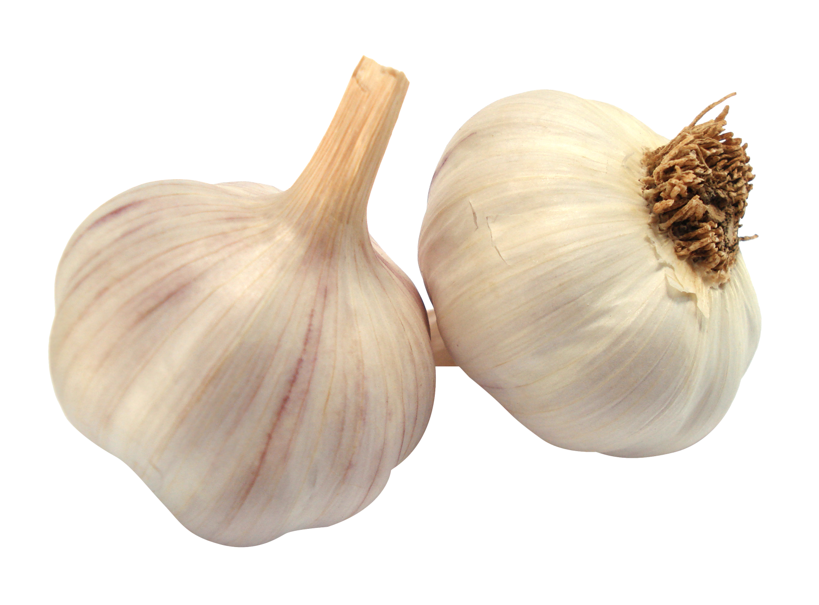 Garlic HD PNG-PlusPNG.com-1624 - Garlic HD PNG