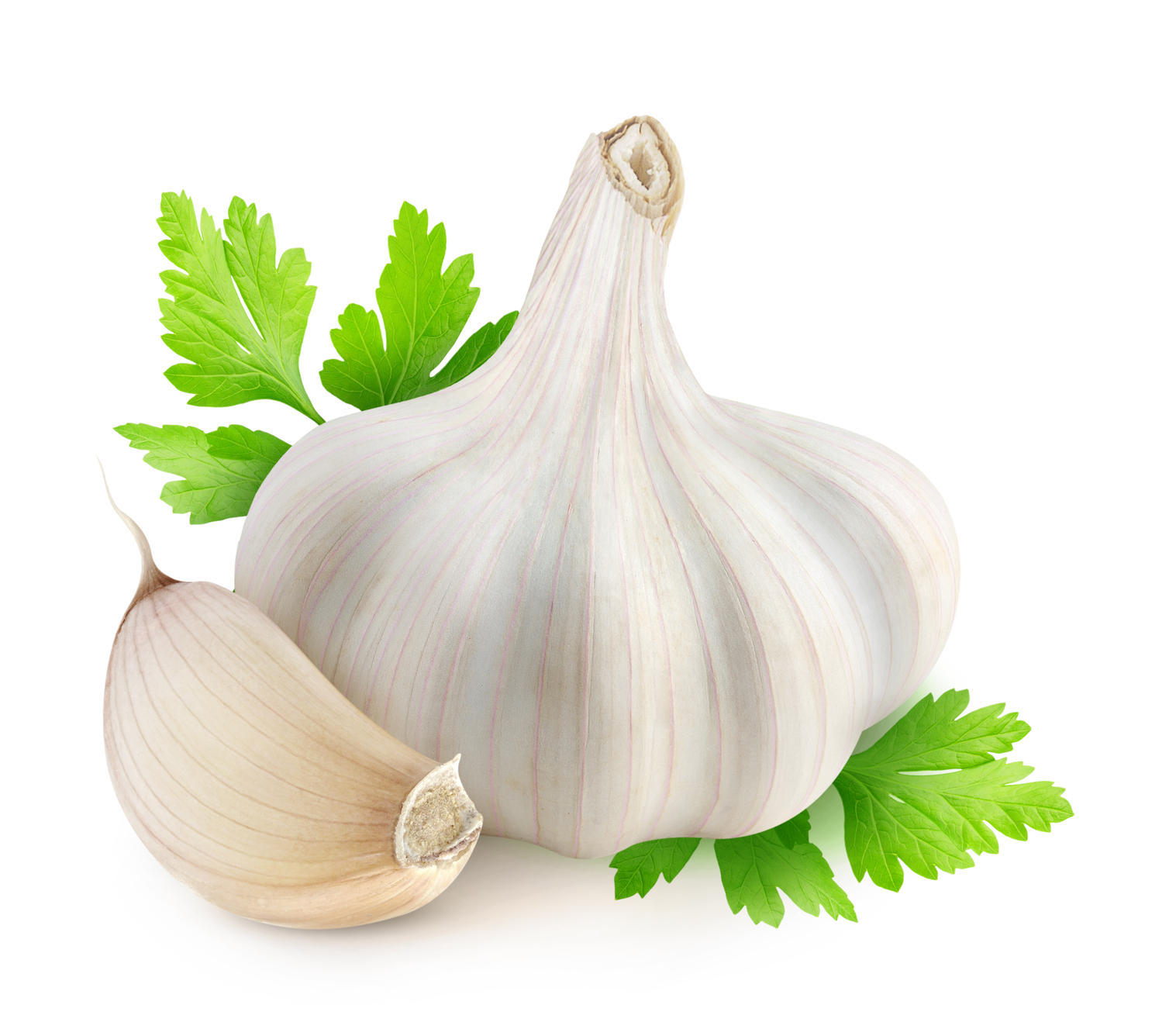 Garlic - Garlic PNG - Garlic HD PNG
