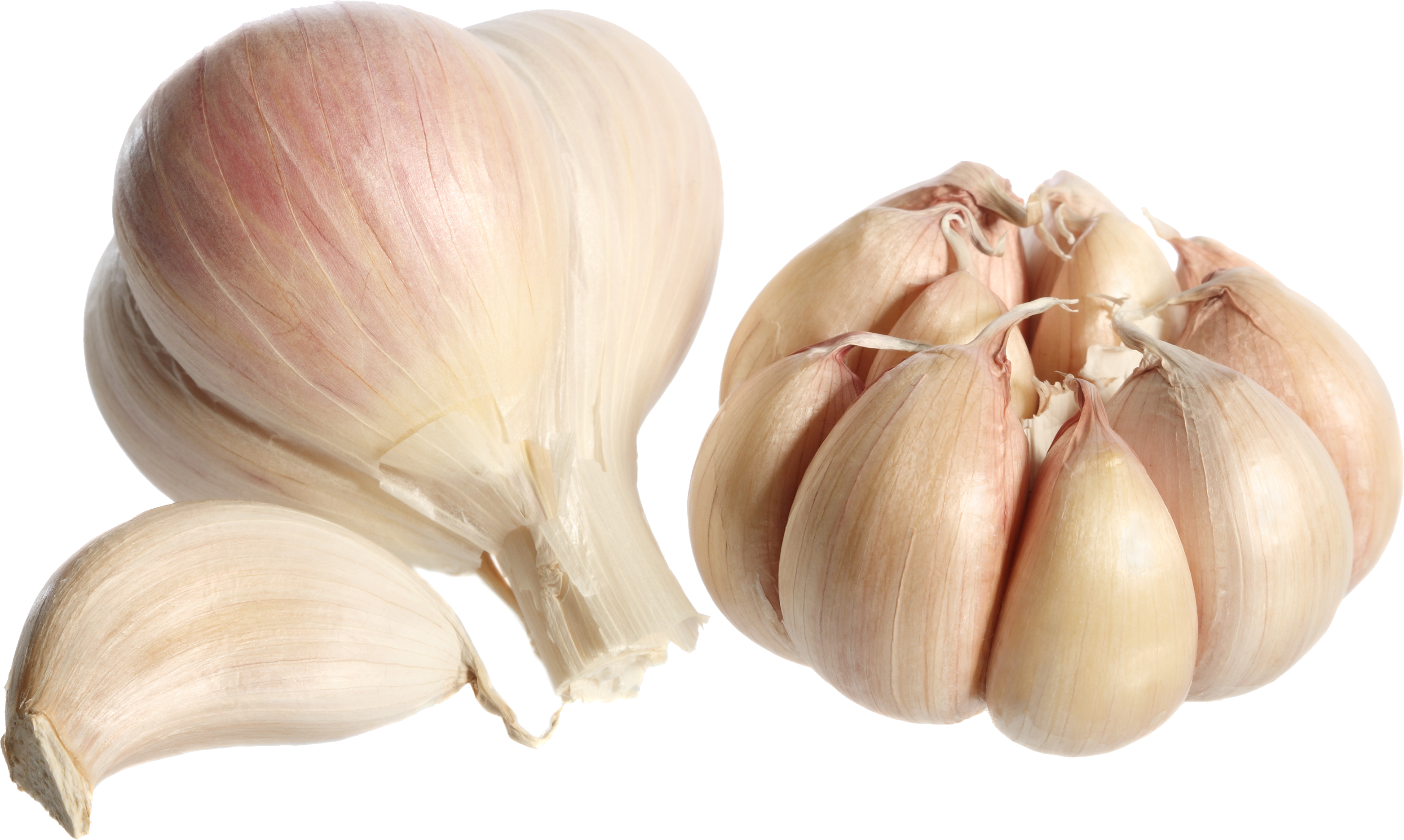 Garlic PNG - Garlic HD PNG