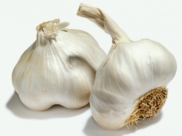 garlic.png - Garlic PNG