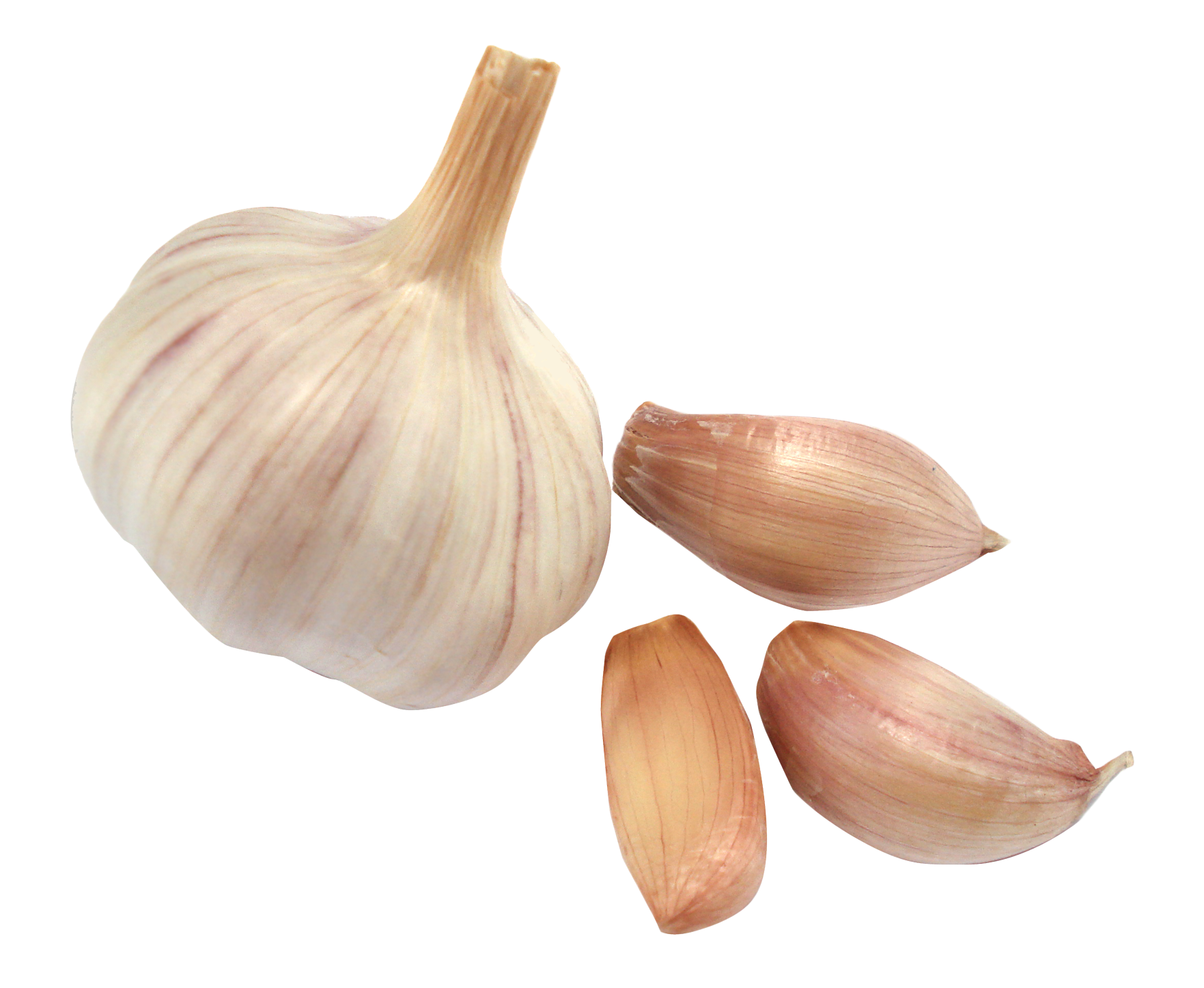 jpg 3732x3085 Garlic transpar