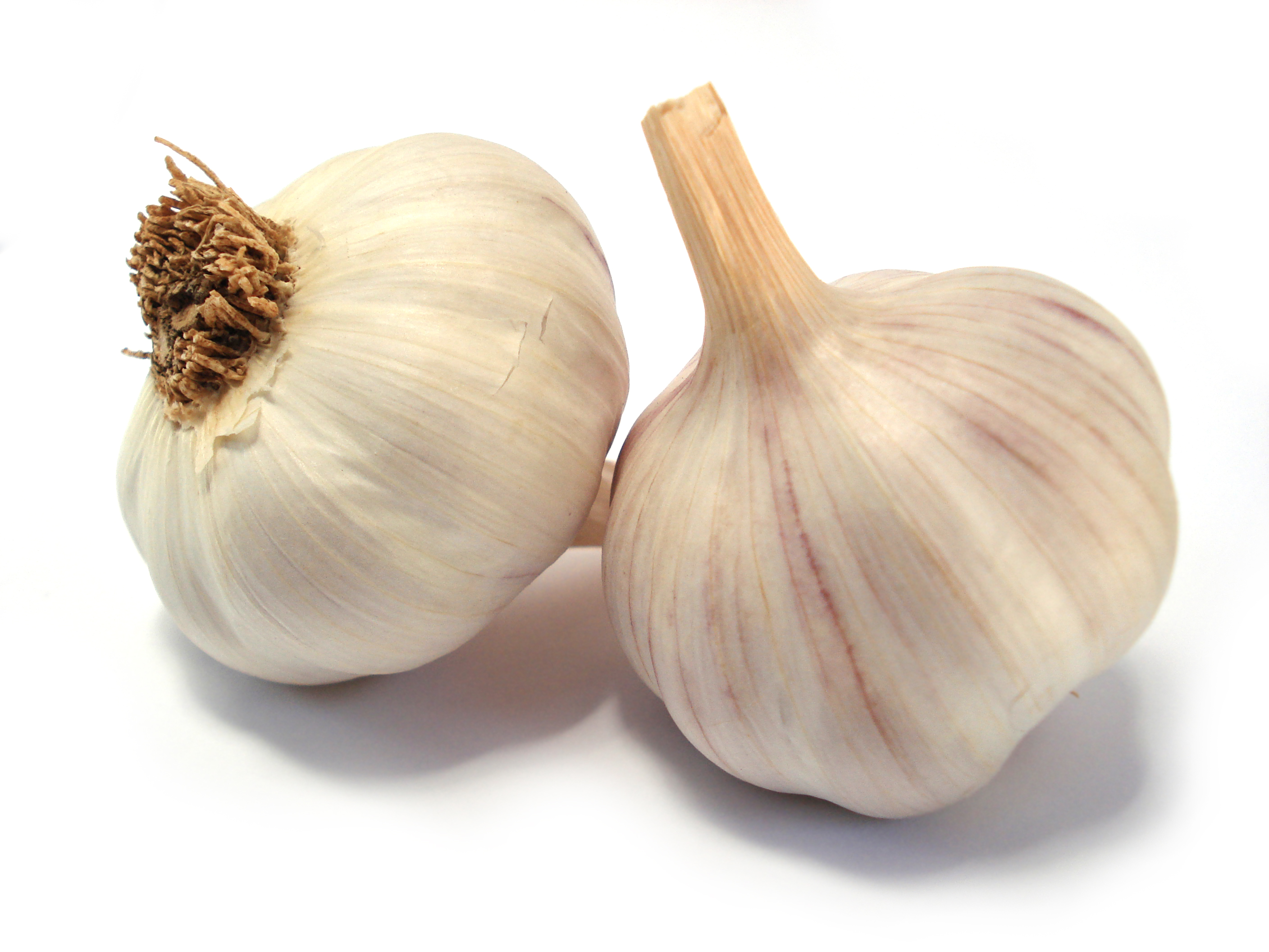 GarlicCloves indian spices,buy indian spices,buy garlic - Garlic PNG
