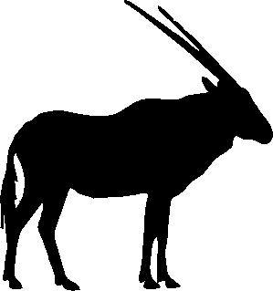 Back Oryx / Gemsbok - Gemsbok PNG