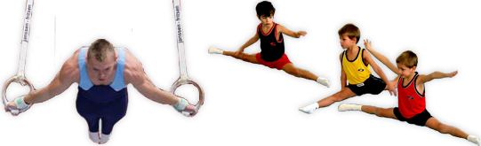 Gimnastyka sportowa - Gimnastyka Sportowa PNG