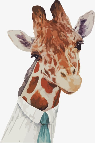 Giraffe Head PNG HD - 129411