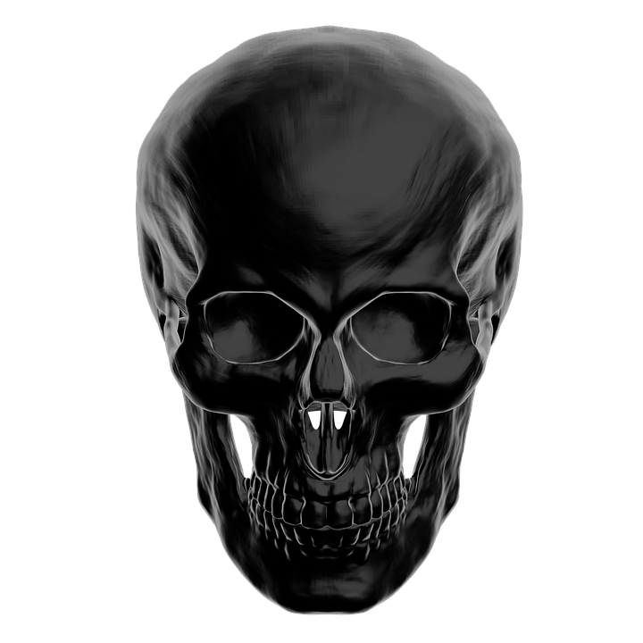 Adult Content SafeSearch Skull, Anatomy, Skull And Crossbones - Girl Skull PNG HD
