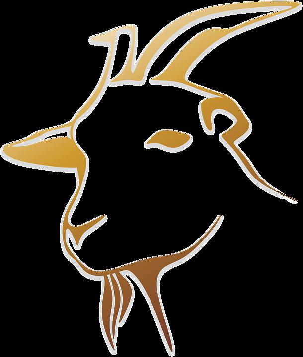 Goat PNG - 15774