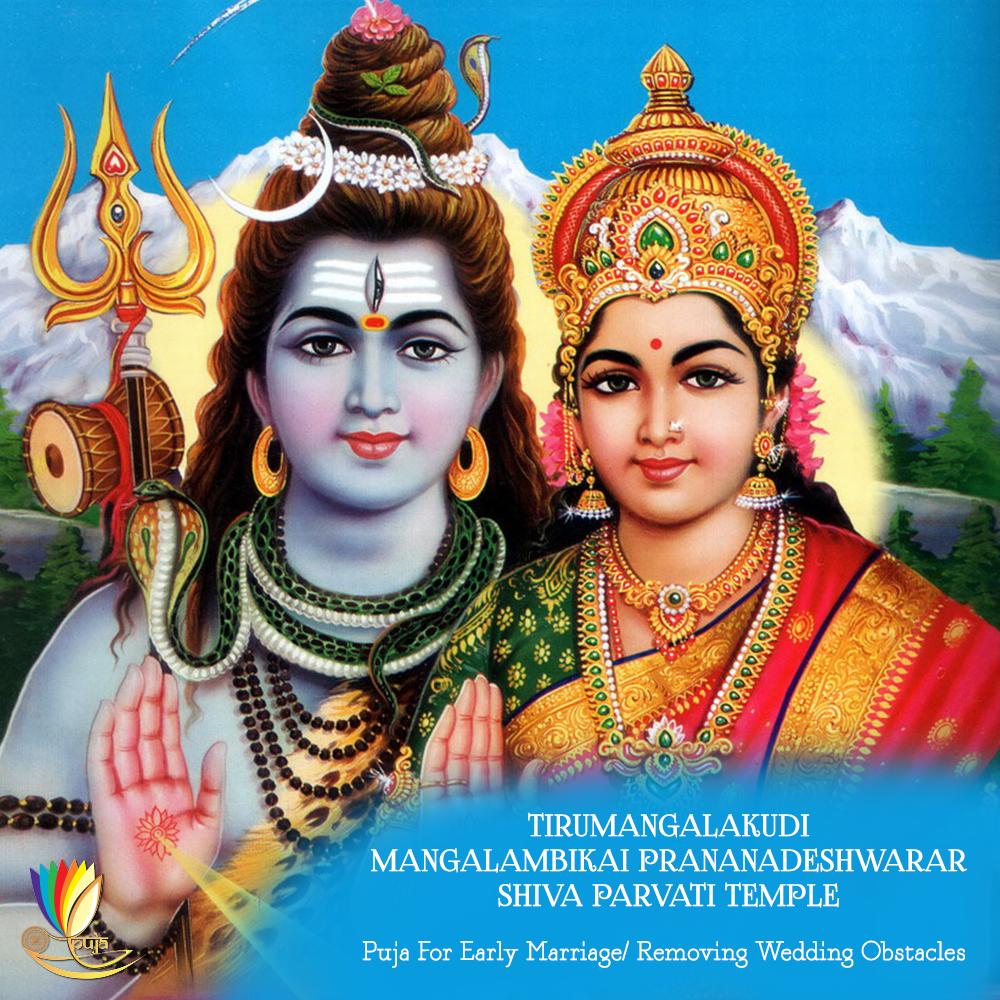 TIRUMANGALAKUDI MANGALAMBIKAI PRANANADESHWARAR SHIVA PARVATI TEMPLE Puja  For Early Marriage/Removing Wedding Obstacles, Tirumangalakudi - God Siva Parvathi PNG