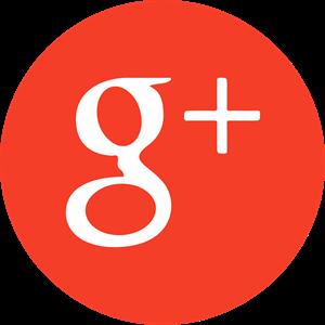 Google  Icon Logo Vector - Google Photos Logo Vector PNG