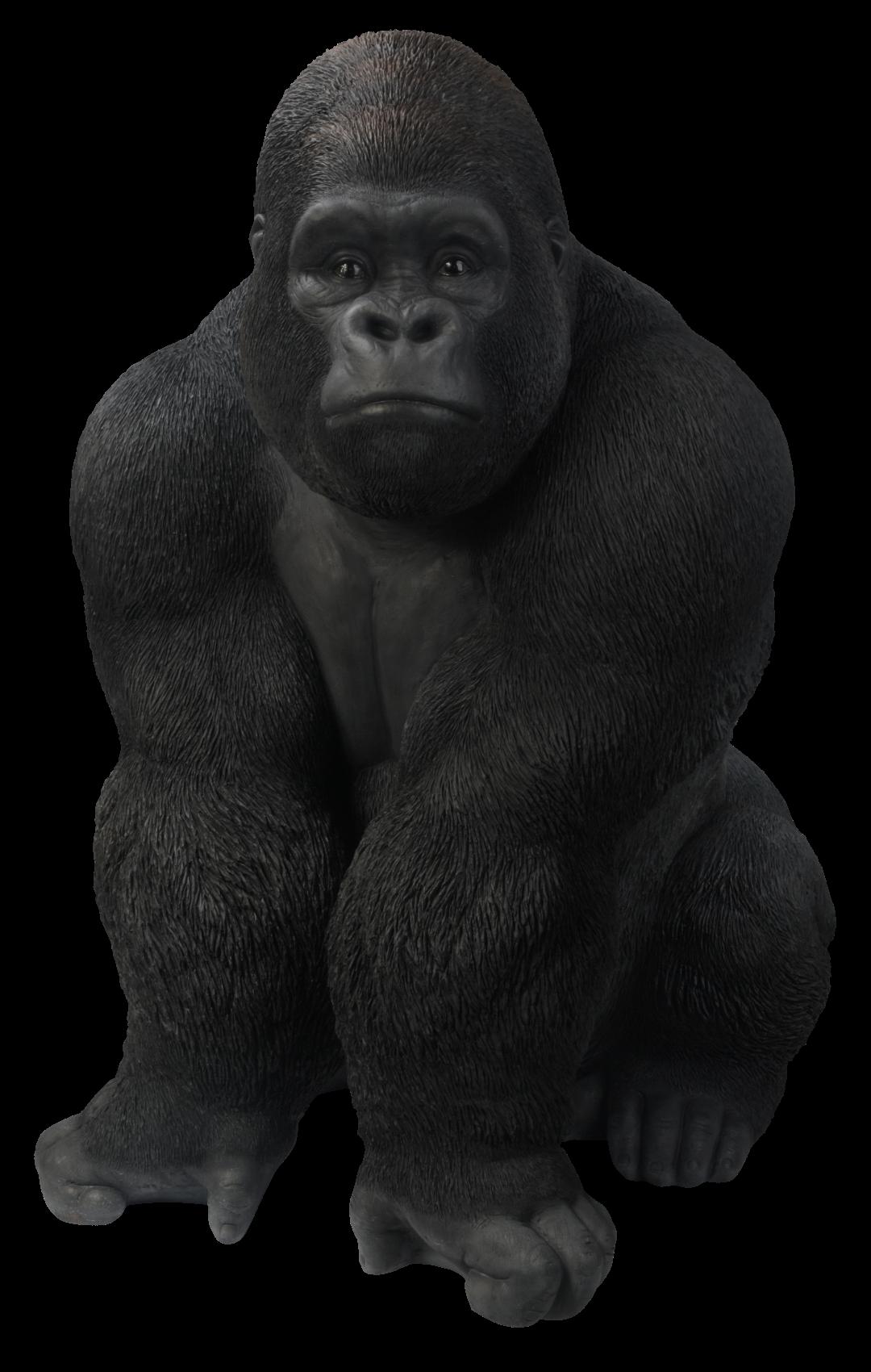 Gorilla PNG - 12147