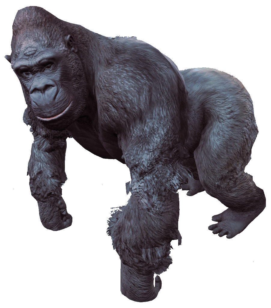 Gorilla PNG - 12143