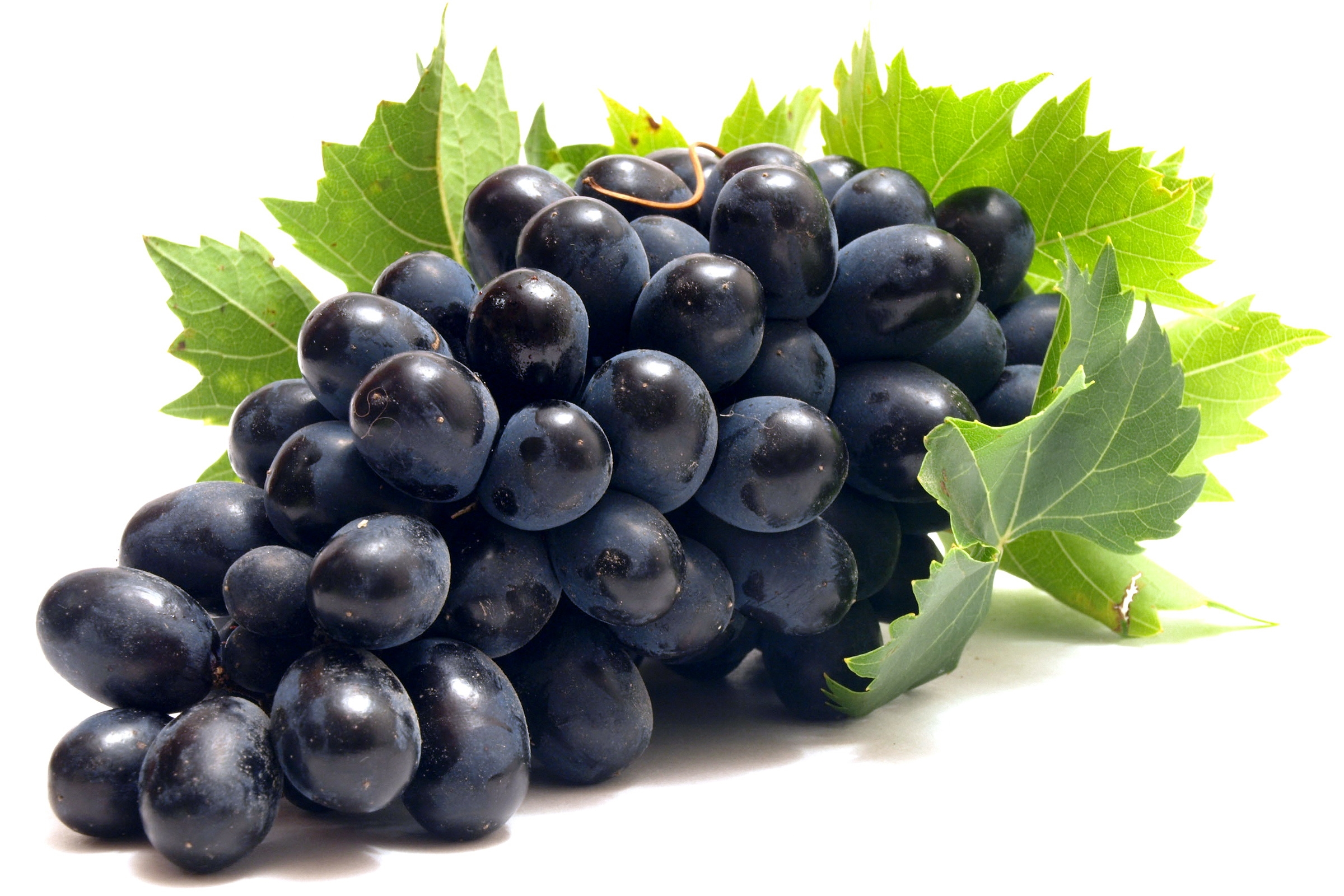 Grapes HD PNG-PlusPNG.com-2400 - Grapes HD PNG