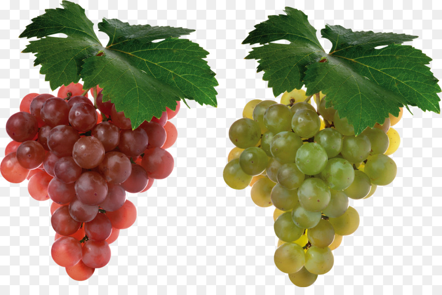 Cabernet Sauvignon Grape Juice Shiraz Fruit - Grapes - Grapes HD PNG