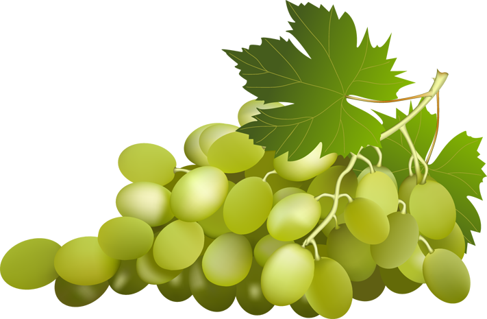 Grape Free PNG Image - Grape Vine PNG HD Free - Grapes HD PNG