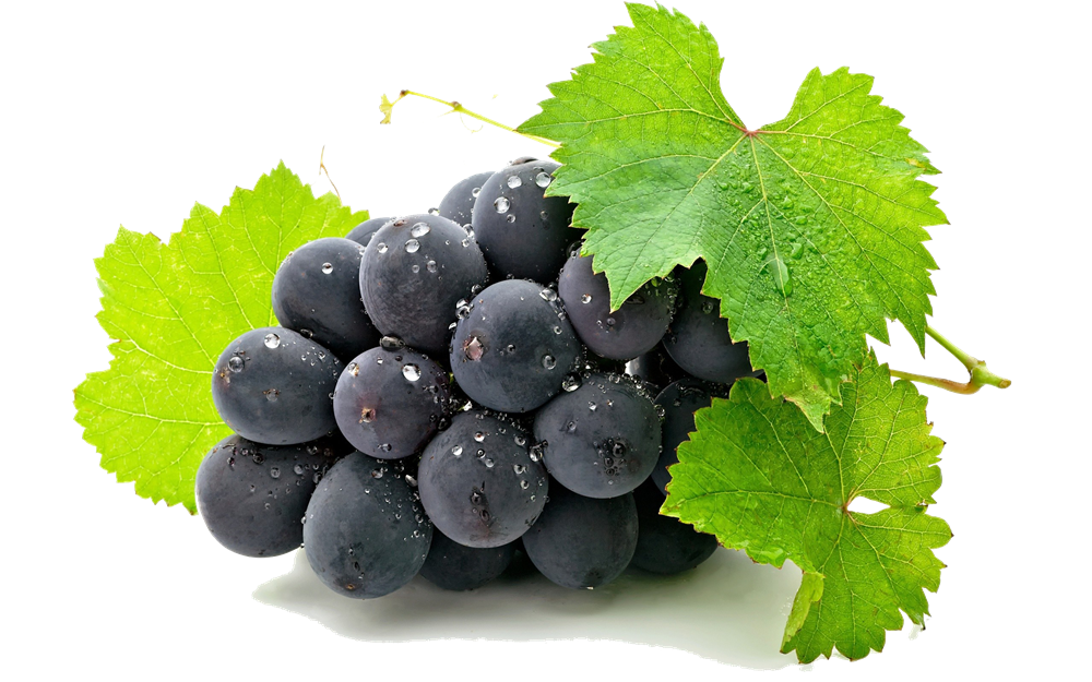 Grape Png Hd - Grapes HD PNG