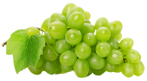 Grape PNG Picture - Grapes HD PNG