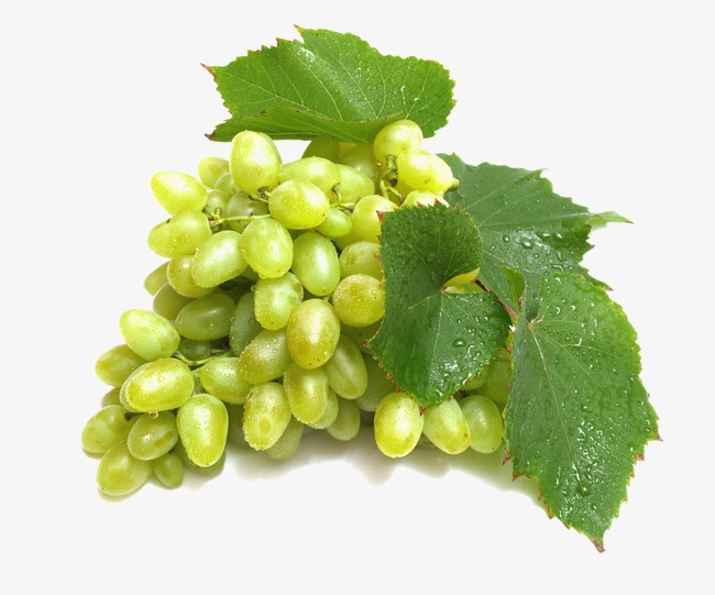 HD green grapes png picture material Download, Hd Green Grapes Png Picture  Material Download Free - Grapes HD PNG