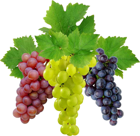 seeded grapes - Grapes HD PNG