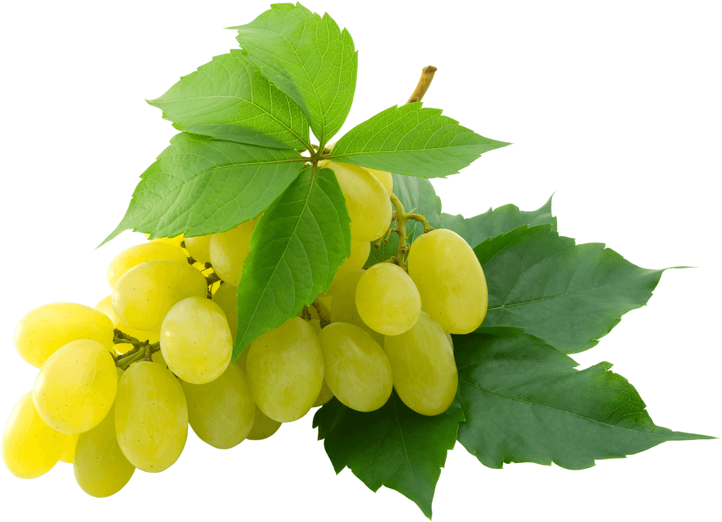White Grape - Grapes HD PNG
