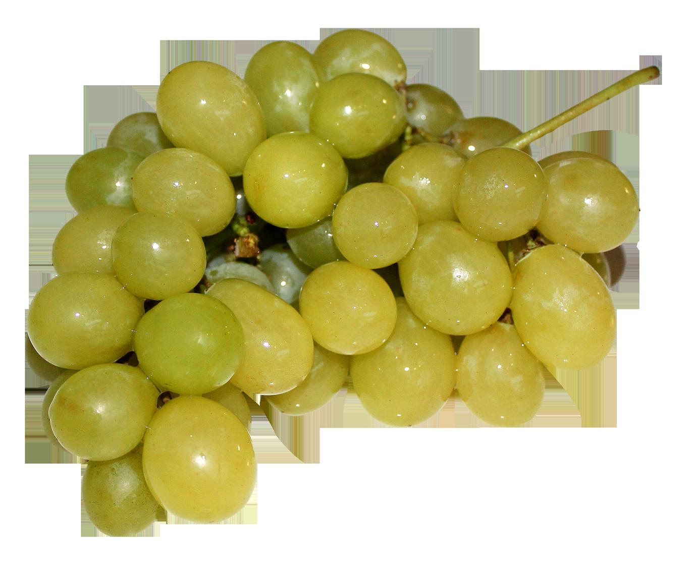 Grapes PNG - 21515