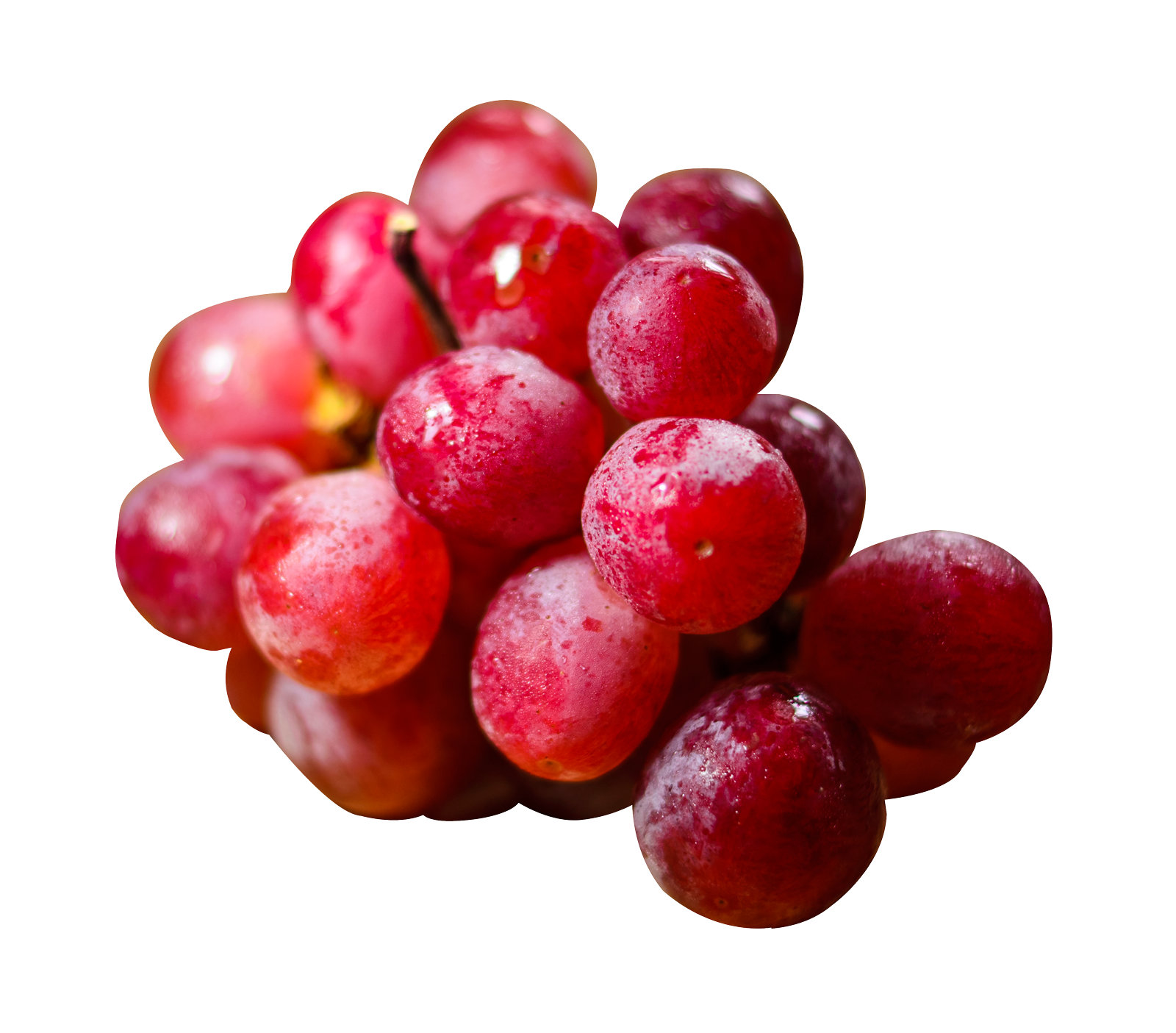 Grapes PNG-PlusPNG.com-1600 - Grapes PNG