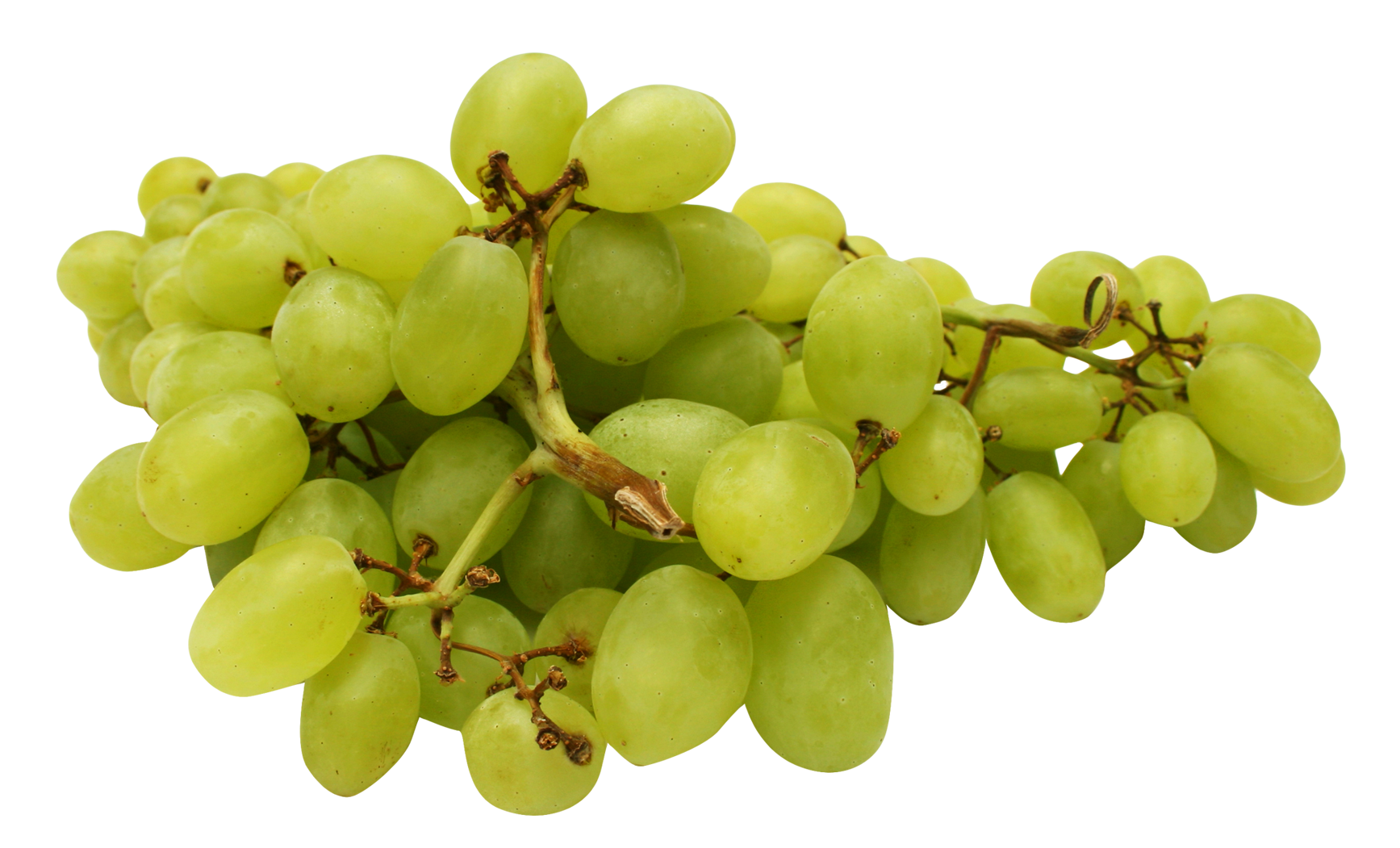 Red grape PNG image