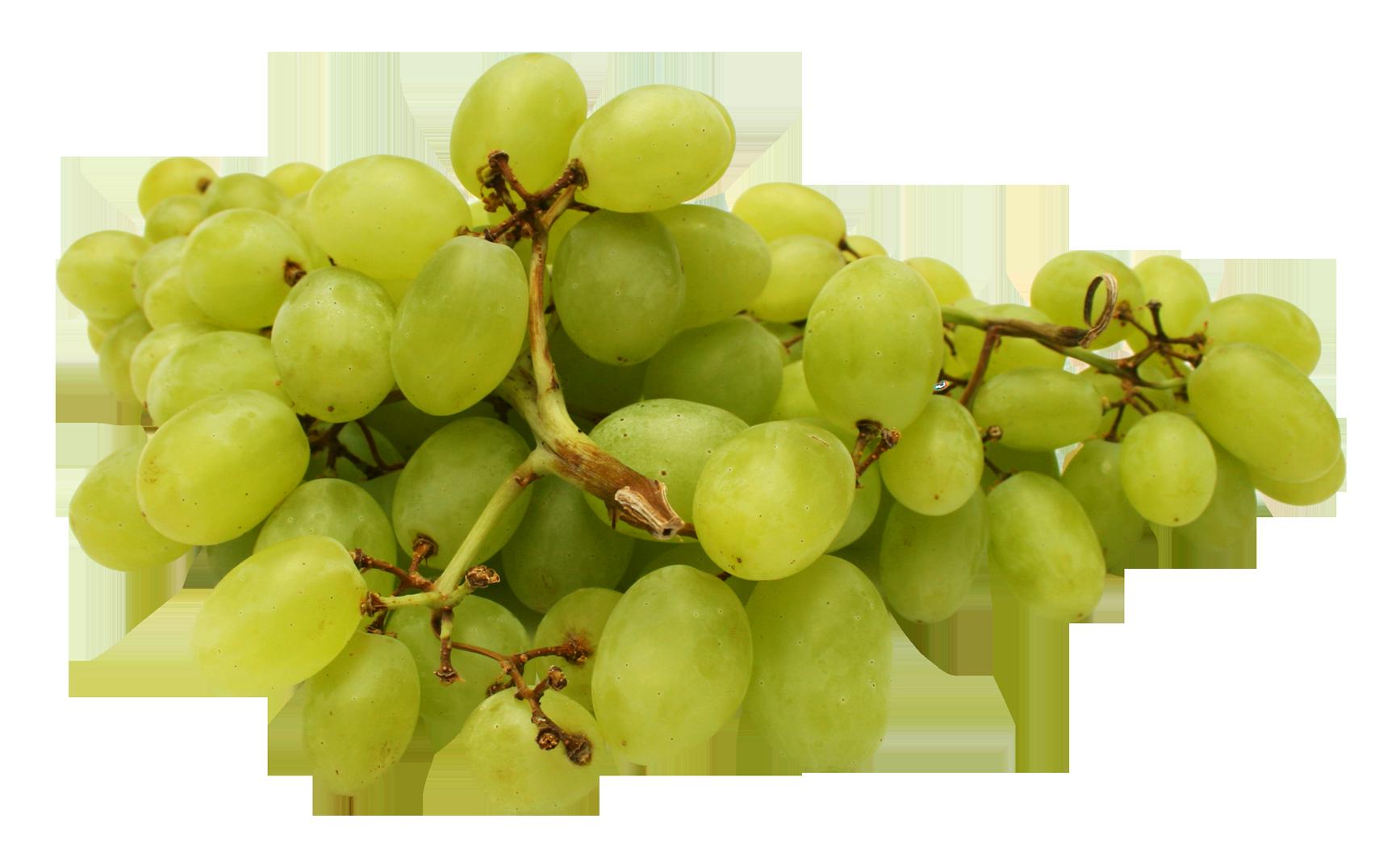 Grapes PNG - 21507