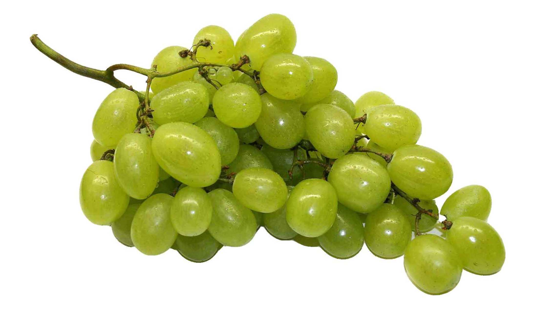 Filename: green-grapes-6429.full.png - Grapes PNG
