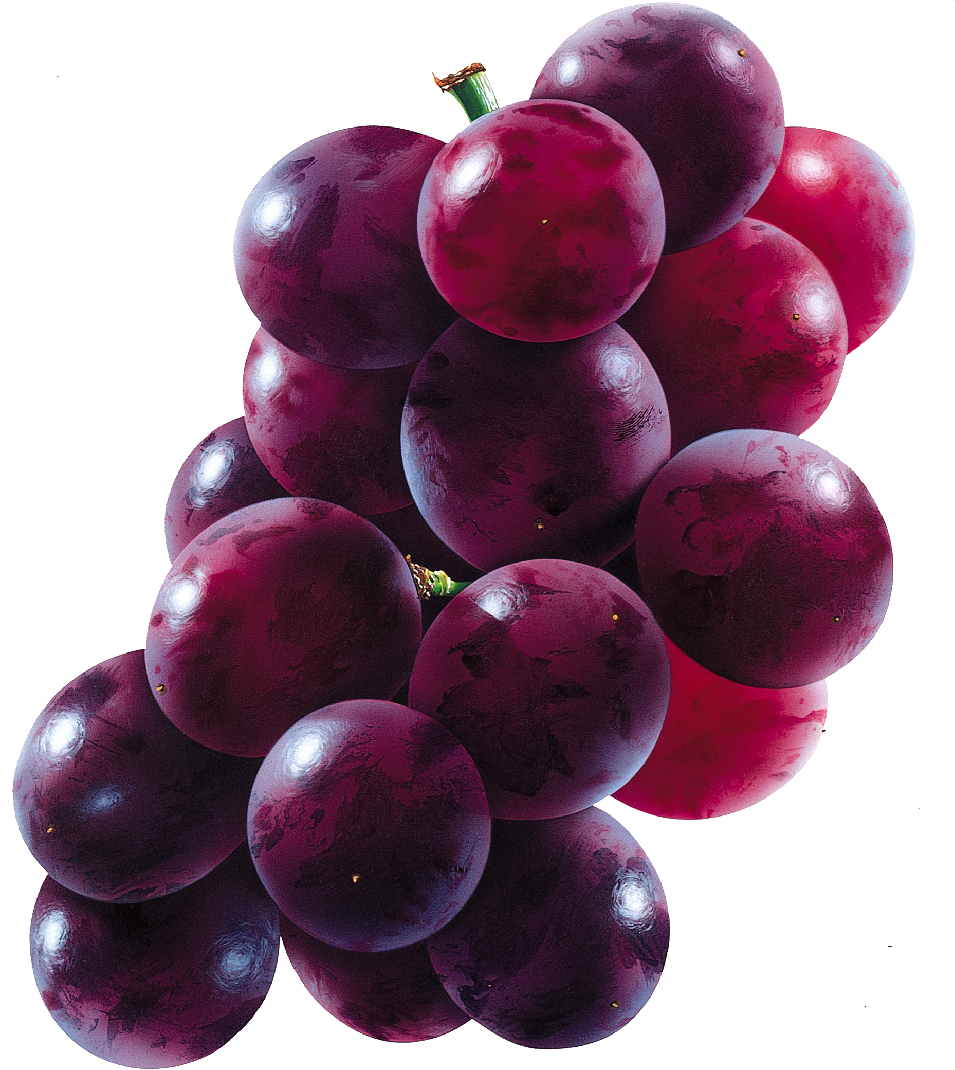 Red grape PNG image - Grapes PNG