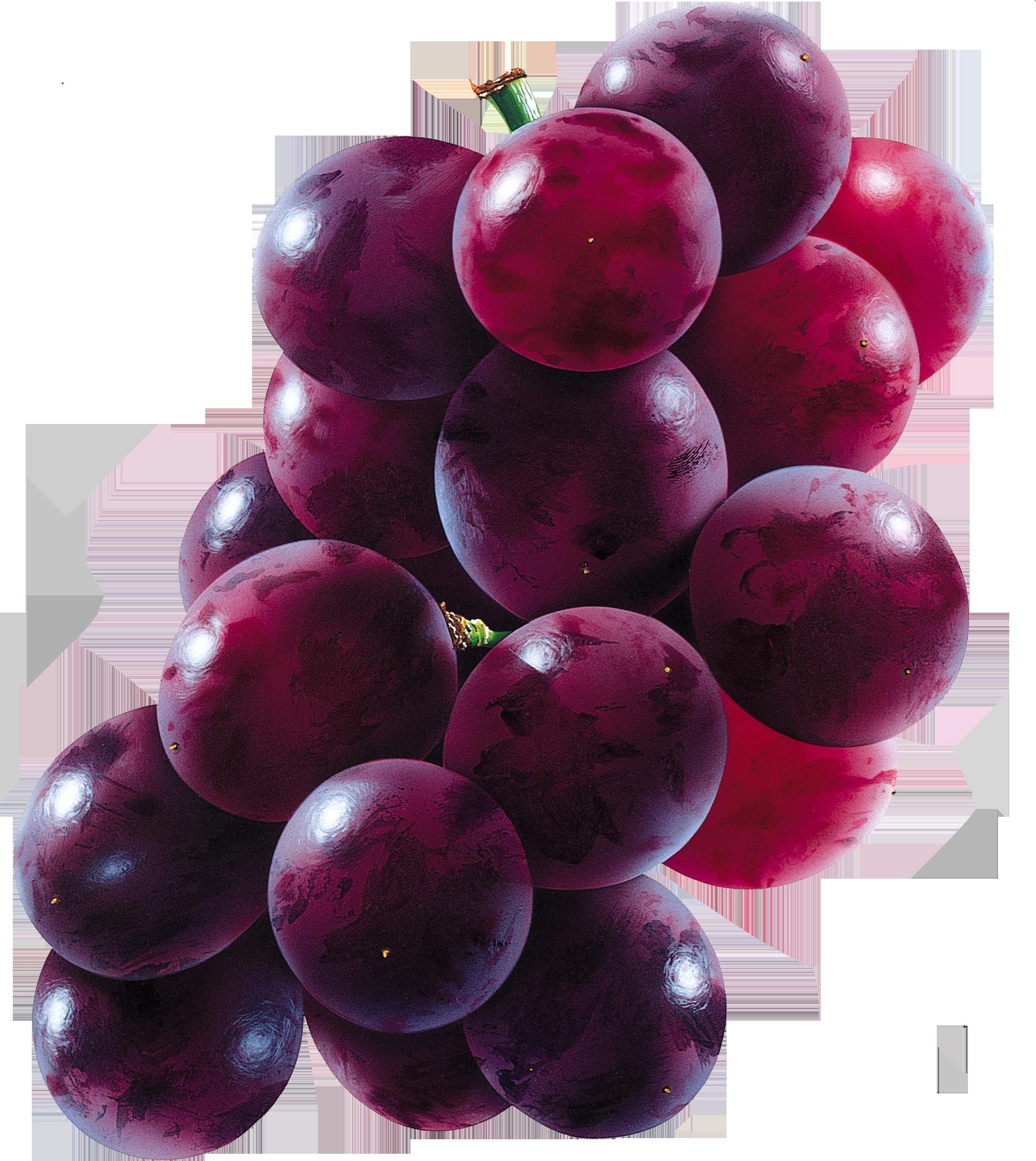 Grapes PNG - 21506